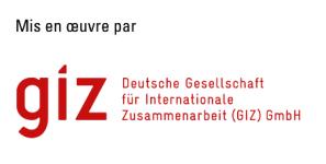 GIZ 2